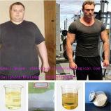 Zugelassene Ergänzungs-rohes Steroid Puder-Testosteron Sustanon 250 für Muskel-Gebäude