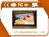 Pantalla de visualización a todo color de interior de LED de SMD P6 con precio de fábrica
