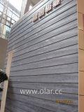 Panneau de voie de garage en bois léger élevé d'enduit de couleur de grain