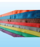 Bride plate de sangle de polyester d'oeil de certificat approuvé de haute résistance de la CE