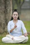 """Vestito di bambù di Wudang Kongfu della canapa del collare obliquo Long-Sleeved di prima scelta di """"chi"""" del Tai"""