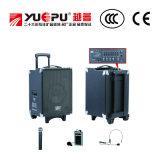 Altoparlante professionale di PA con la deviazione standard ed il USB (due Mics tenuto in mano senza fili)