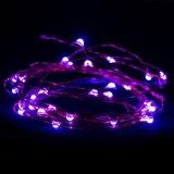 Luzes da corda do fio de cobre do diodo emissor de luz para a decoração clara ao ar livre