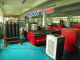 máquina de estaca do metal do laser da fibra do CNC 1000W para a placa da folha de estaca