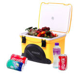 Mini caixa 5liter do refrigerador com o rádio para a aplicação da atividade ao ar livre