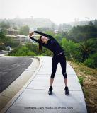 La yoga del desgaste de la aptitud de las mujeres de la alta calidad jadea el juego de gimnasia atlético de la ropa