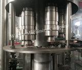 Производственная линия оборудования чисто воды разливая по бутылкам