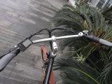 2016 Btn 새로운 디자인 싼 바닷가 전기 함 자전거