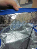 Form Flexible Vertical Cube Insulated Picnic Non Woven Cooler Bag