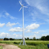 Wind en Solar Hybrid System 5kw met Well Performance