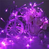 Bateria Decorativa Bateria Twinkling Fairy LED Curtain Light