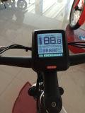 Bicicletta poco costosa delle parti di bicicletta della memoria della bicicletta elettrica in linea del motorino
