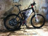 Kit elettrico 48V1000W della bici del motore senza spazzola del mozzo con Bulit in regolatore programmabile