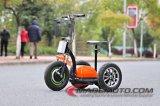 scooter électrique Zappy de 3 roues de Mypet de gingembre de 500W 48V 20ah Roadpet