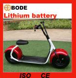 리튬 건전지를 가진 새로운 1000W 전기 자전거 전기 스쿠터