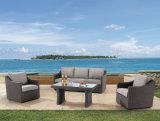 Osier de patio de jardin/sofa de rotin réglé - meubles extérieurs