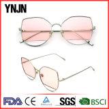 Olho de gato novo dos óculos de sol das lentes do espaço livre do projeto da personalidade