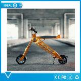 浜の雪のための電気バイクを折る2017年のカスタマイゼーションのロゴの電気自転車すべての地勢