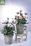 Kunstmatige Mini nam Boquet in de Pot van het Cement van de Kleur voor Decoratie toe