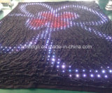 Visualizzazione della tenda di P10 LED