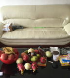 Canapé moderne de loisirs en cuir (B. 8245)