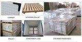 Nuove mattonelle 600*600mm della porcellana lustrate Matt di arrivo per il pavimento e la parete (DN6201)
