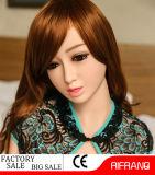 Gebildet China-in den künstlichen kleines Mädchen-Geschlechts-Puppen