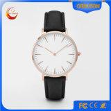 2015명의 최신 판매 고품질 Dw 작풍 형식 여자 시계