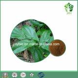 Выдержка Icariin 5%~98% Epimedium высокого качества здоровья людей