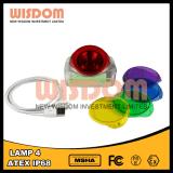 Hellste drahtlose Lampe mit 25000lux, neueste im Freienlicht der Klugheit-Lampen-4