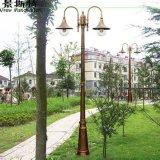 Luz solar del jardín del modelo popular sin la contaminación atmosférica del ruido o