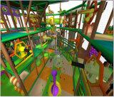 Beifall-Unterhaltungs-Dschungel-themenorientierter Innenspielplatz