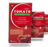 규정식 환약을 체중을 줄이는 자연적인 토마토 나무 체중 감소