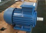 Y2 Series AC Elektrische Motor van het Gietijzer