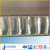 Fornitore esterno decorativo del comitato del favo del laminato HPL del compatto