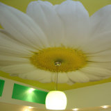 Пленка PVC крена пленки крена пленки потолка простирания PVC поставкы прокатывая мягкая декоративная