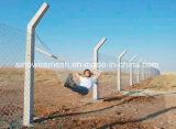 Sailin PVC 체인 연결 철망사 그물세공