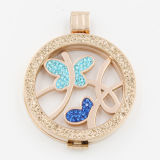 Монетки бабочки приспособленные с ювелирными изделиями способа Locket привесными