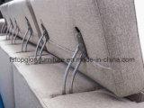قطاعيّة بسيطة حديثة بناء أريكة لأنّ يعيش غرفة ([تغ-9010])
