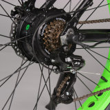 Vélo de montagne électrique des prix civils avec le gros pneu à vendre