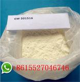 체중 감소 CAS 317318-70-0 Gw1516를 위한 Sarms 분말 Gw501516/Cardarine