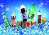 SGS 자동적인 Dxgf60-60-15 22000-24000bph에 의하여 탄화되는 음료 충전물 기계