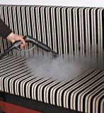 고압 강력한 수증기 홈 양철통 증기 Mop
