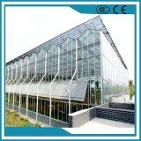 Serra di vetro intelligente di alta qualità di orticoltura