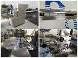 Machine de conditionnement horizontale automatique de casse-croûte de palier d'emballage de la Chine