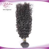 Natürliches rohes peruanisches bestes lockiges Jungfrau-Haar des Grad-8A