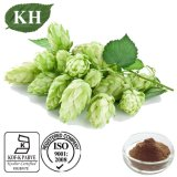 Kingherbs extracto de lúpulo flavonoides 4%, CAS No .: 8016-25-9
