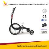 (JX-01B) Bici del deporte de la bici de ejercicio del modelo nuevo
