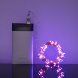 пурпур венчания света шнура медного провода USB СИД 10m 100LEDs водоустойчивый
