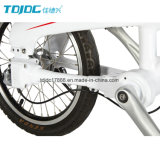 "20 "" Bicycle/No 사슬 자전거를 접히는 접히는 자전거 또는 고품질"
